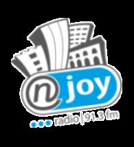 Logo von Radio NJOY 91.3