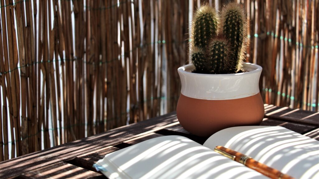 Schreibutensilien, Kaktus
